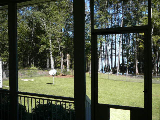 View from Scr Porch